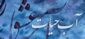 نير مصرى پور