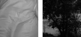 نمایشگاه عکس هادی فلاح پیشه