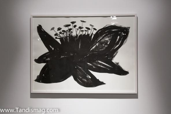 nahid behboodian mohsen gallery 7