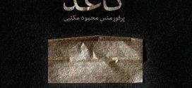 محمود مکتبی پرفورمنس کاغذ