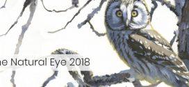 فراخوان حیات وحش The Natural Eye