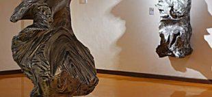 شهاب سنگها در موزه خلیج فارس