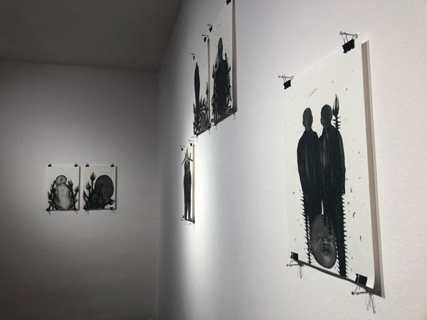 بر نمایشگاه «رز سفید» سارا عباسیان در گالری محسن