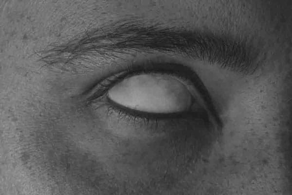 معرفی عکاسان برتر سوفی گابریل