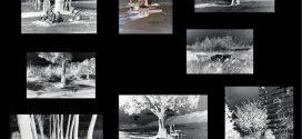 نمایشگاه ويديو مپينگ گالری فرمانفرما زوال، دیالکتیکِ استمرار